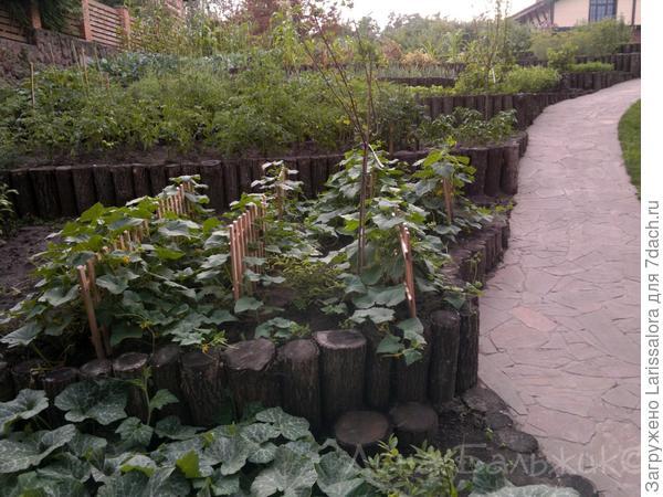 Декоративный огород на неровном рельефе
