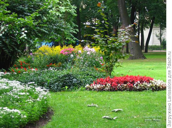 Цветники без пустующих мест. Фото А. Папкова