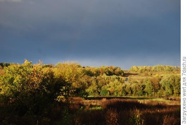 Осенний пейзаж в Губкинском районе