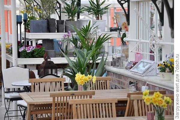 Теплица кафе Готебург Швеция