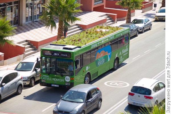 Автобус с садом на крыше