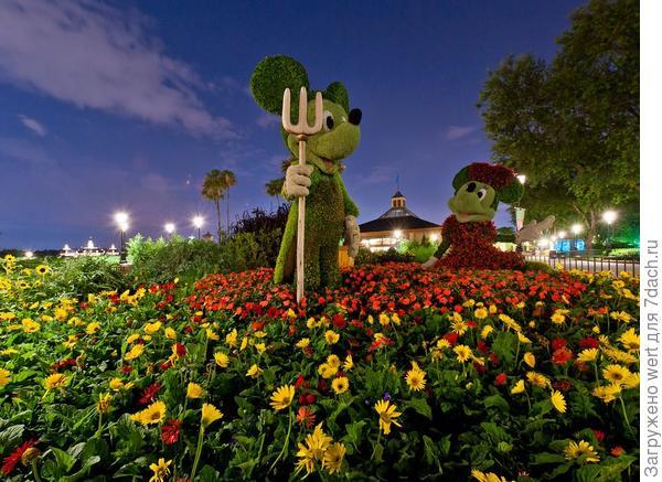 Epcot International Flower & Garden Festival 2014