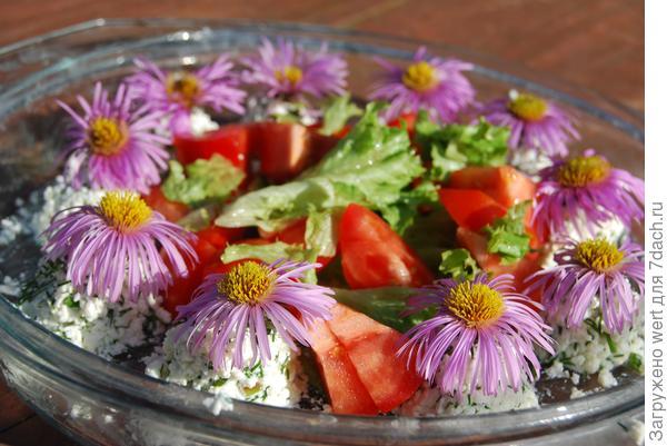 Салат с творогом, зеленью и помидорами (рецепт)