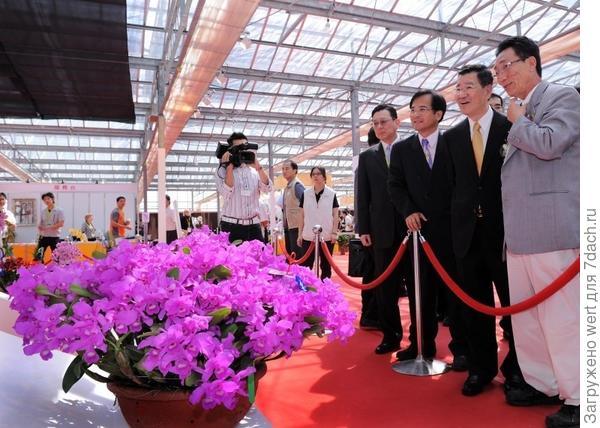 Taiwan International Orchid Show 2014