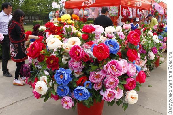Фестиваль пионов в Китае