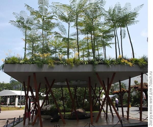 Сингапурский фестиваль