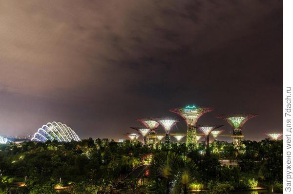Сингапурский чудо-парк