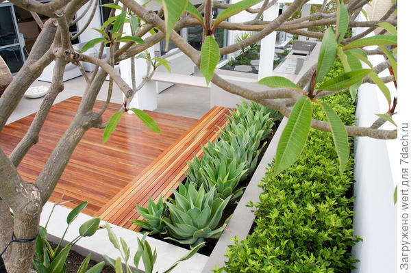 Минималистичный сад