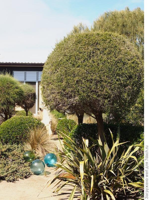 Сад Фионы Брокхофф