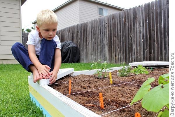 Детский мини-огород
