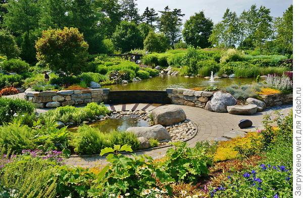 Прогулка по ботаническому саду
