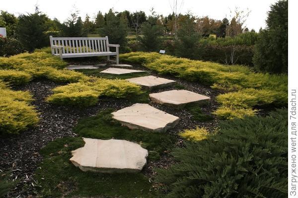 11 приемов ландшафтного дизайна