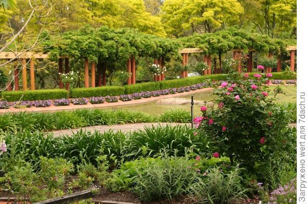 Интересный сад