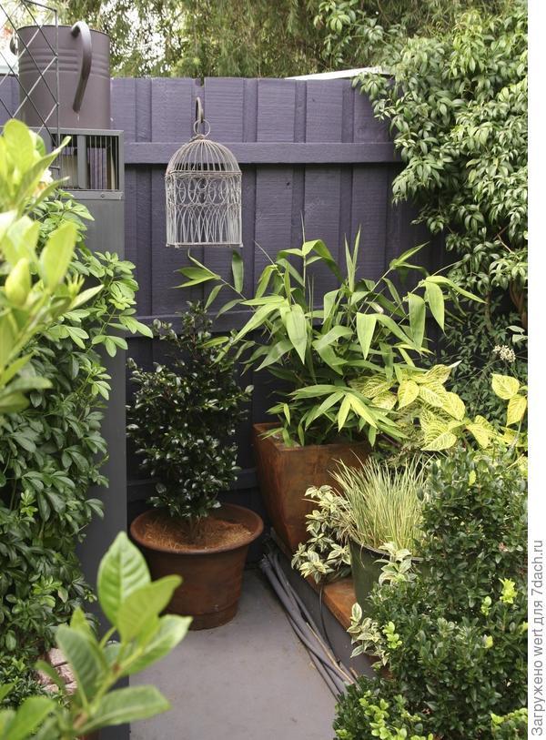 Изысканный крошечный сад Дженни Вудрафф