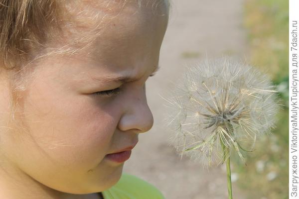 Серафима и цветок