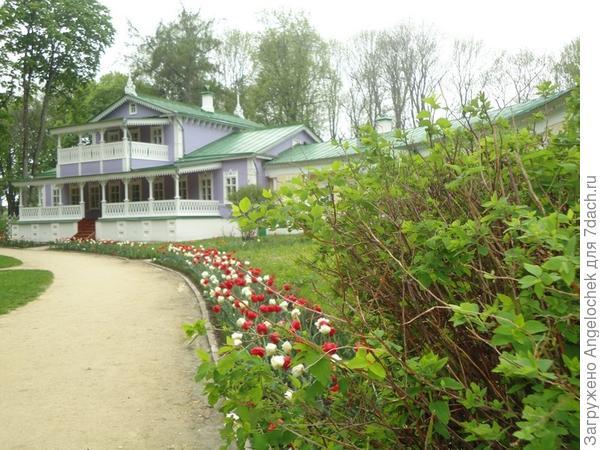 тюльпаны и усадьба Тургенева