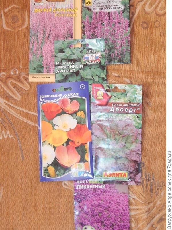 семена лекарственных растении