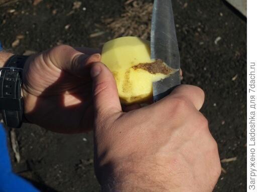 Чистим картошку