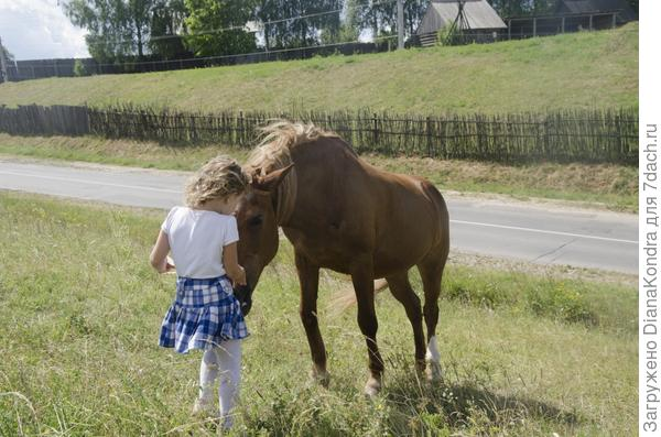 дочка с любимой лошадкой розочкой