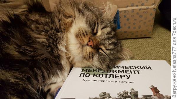 с умной книжкой