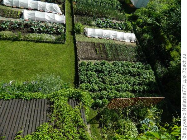 огород сверху