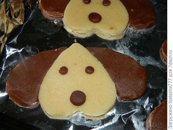 печенье - собачка