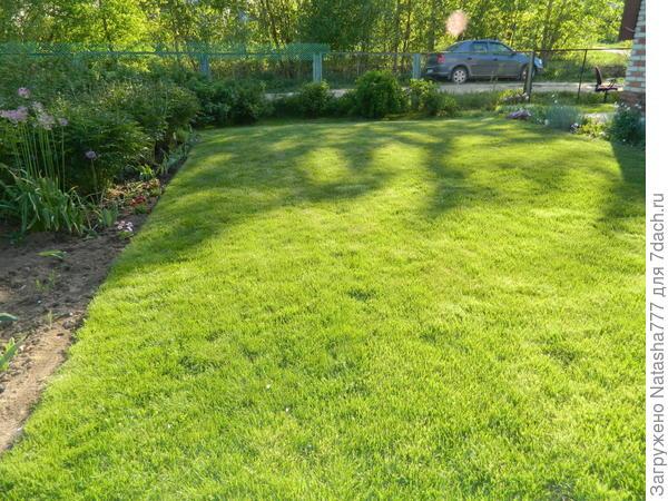 подрезаю газон
