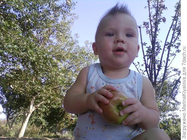 Андрюша 6 месяцев