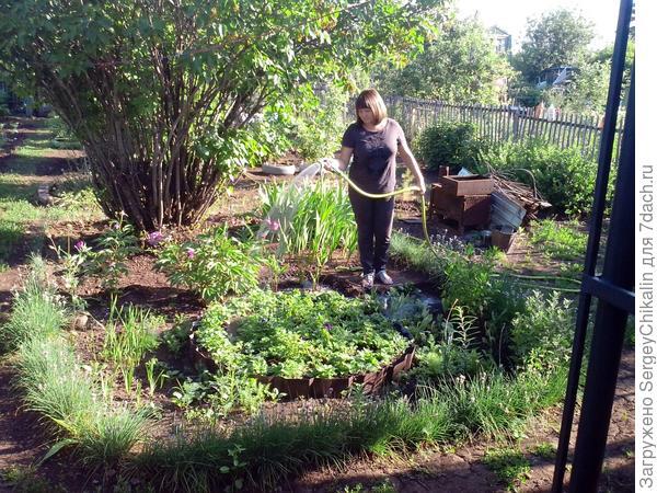 полив огорода