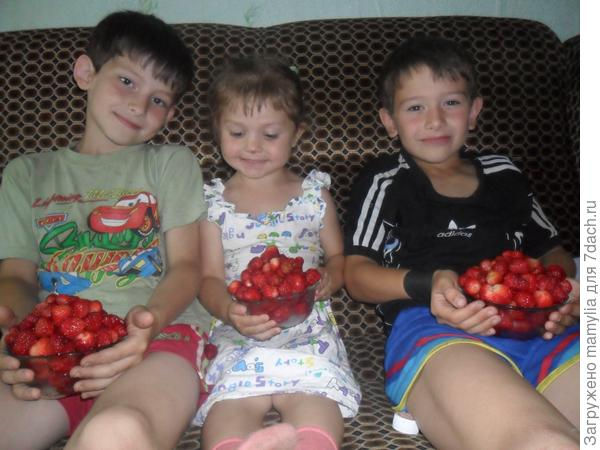 дети с клубникой