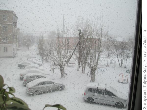 погода в конце апреля 25.04.14г.