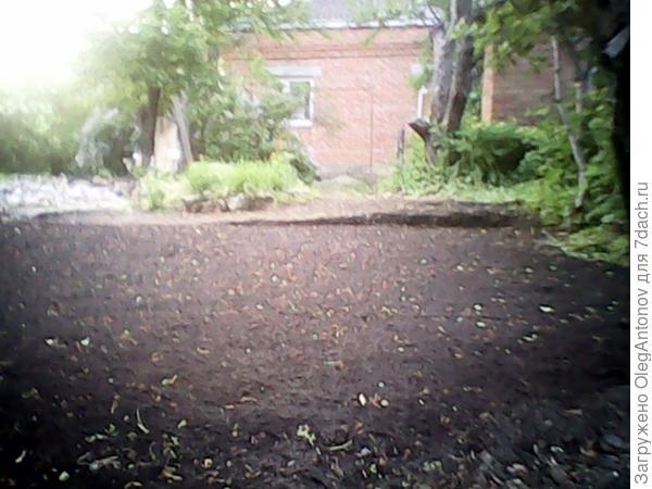 новый газон
