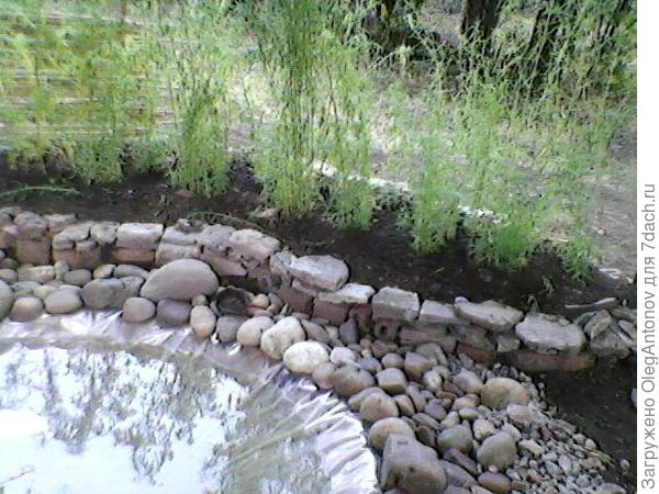 новый пруд