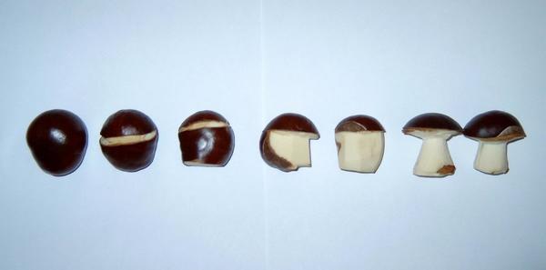 Схема изготовления грибочка из плода каштана