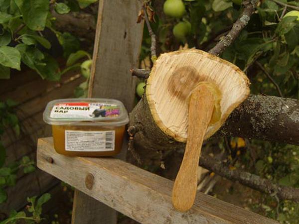 Самому тоже можно приготовить садовый вар, фото с сайта yaogorodnik.ru