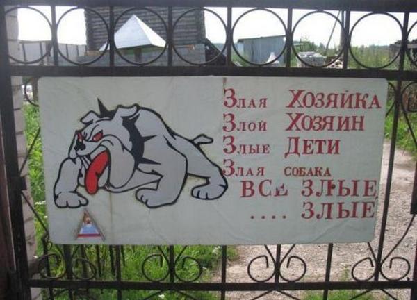 Здесь злые все. Фото с сайта dog-is-life.blogspot.com