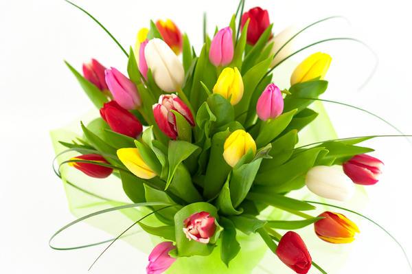 Цветы победителям!!! с сайта 4geo.ru