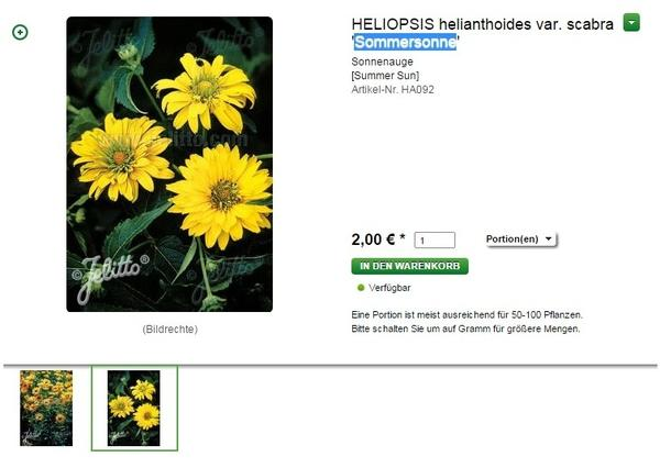 Семена гелиопсиса в продаже