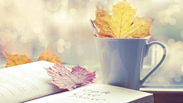 Вот уже и осень...