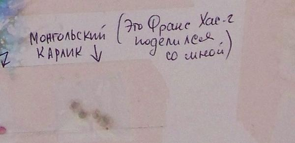 Семена от Франса Хасановича