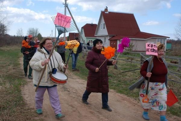 НВ огород, как на праздник. Автор фото: svetlanarus (Светлана, Всеволожск)