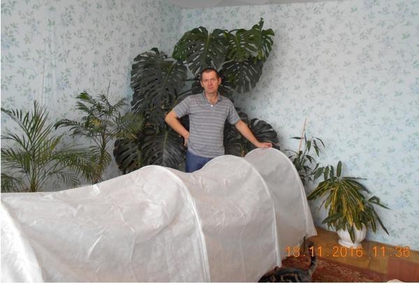 Парник Агроном - в руках победителя конкурса Урожай из парника и теплицы Александра Абрамцова