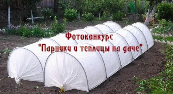 Фотоконкурс Парники и теплицы на даче в группе ВКонтакте