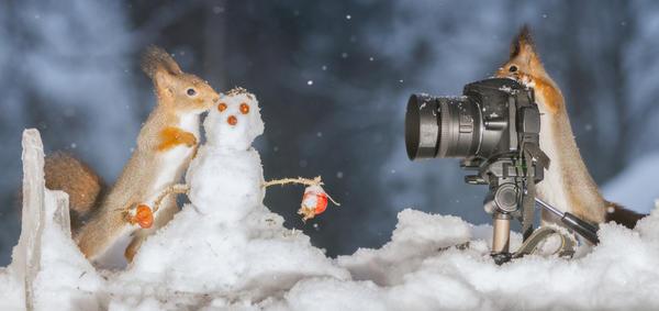 Стартует зимний XXIII этап фотоконкурса!
