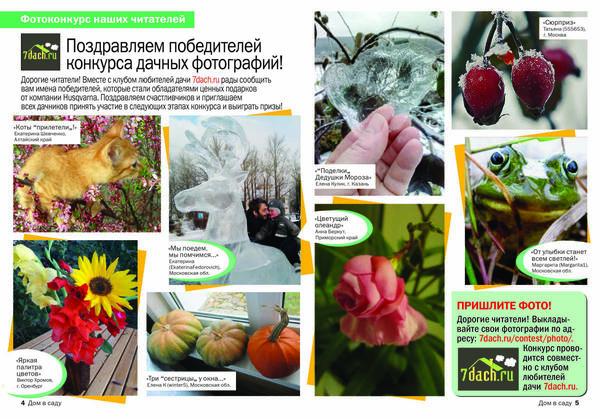 Разворот нашей странички в журнале Дом в саду))