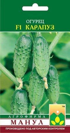Семена Манул