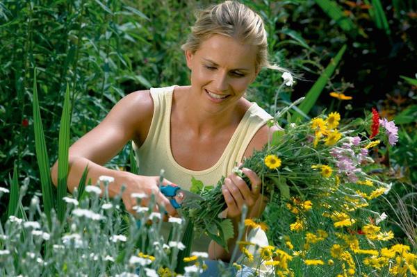 Стартовал конкурс Мой сад - моя страсть!