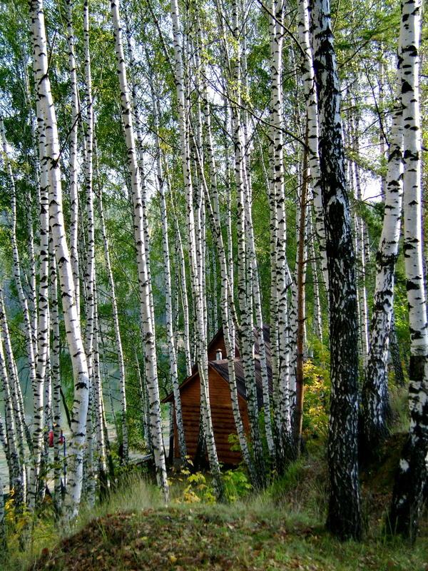 Автор фото: Геннадий Селивёрстов (seliverstov_gena)