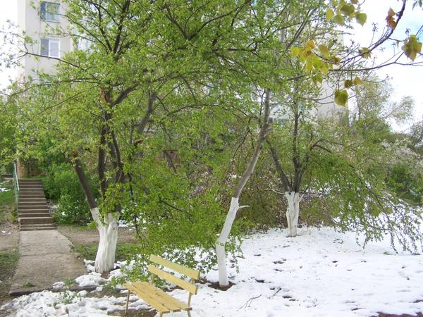 Прогулка после снегопада...