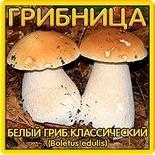 Грибница Белый гриб классический